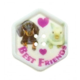 bouton fantaisie sbottonati hexagone best friends 27mm