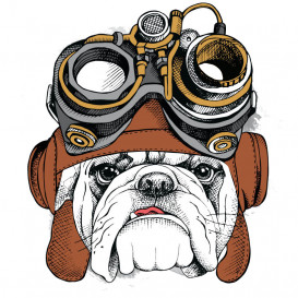 transfert vêtement bulldog aviateur thermocollant
