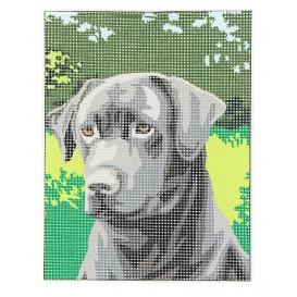 Kit canevas chien noir 15x20 cm