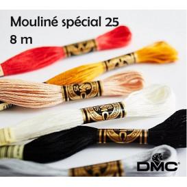 fil à broder DMC mouliné